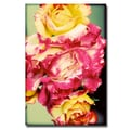 Trademark Fine Art Ariane Moshayedi 'Rustic Roses' Canvas Art 22x32 Inches