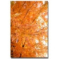Trademark Fine Art Ariane Moshayedi 'Orange Leaves' Canvas Art 30x47 Inches