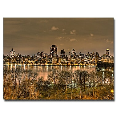 Trademark Fine Art Ariane Moshayedi 'Reservoir Night' Canvas Art 22x32 Inches