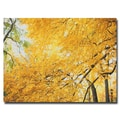 Trademark Fine Art Ariane Moshayedi 'Yellow Foliage' Canvas Art 30x47 Inches