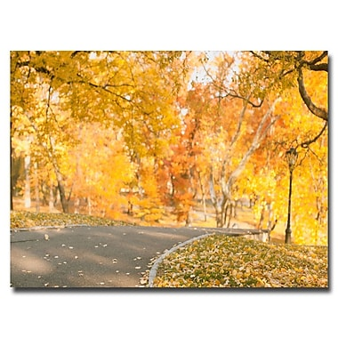 Trademark Fine Art Ariane Moshayedi 'Central Park Path' Canvas Art 30x47 Inches