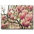 Trademark Fine Art Ariane Moshayedi 'Steel Magnolias' Canvas Art 16x24 Inches