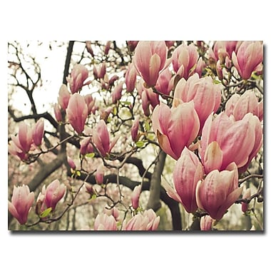 Trademark Fine Art Ariane Moshayedi 'Steel Magnolias' Canvas Art 22x32 Inches