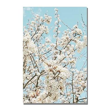 Trademark Fine Art Ariane Moshayedi 'Blue Cherry Blossum' Canvas ArtI 35x47 Inches