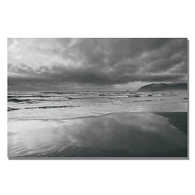 Trademark Fine Art Ariane Moshayedi 'Costal Reflections' Canvas Art 22x32 Inches