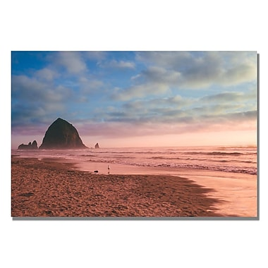 Trademark Fine Art Ariane Moshayedi 'Canon Beach' Canvas Art 35x47 Inches