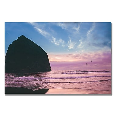 Trademark Fine Art Ariane Moshayedi 'Canon Beach II' Canvas Art 16x24 Inches