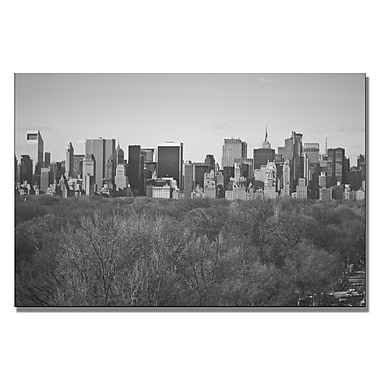 Trademark Fine Art Ariane Moshayedi 'City Line' Canvas Art 16x24 Inches