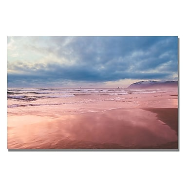 Trademark Fine Art Ariane Moshayedi 'Costal Reflections II' Canvas Art 22x32 Inches