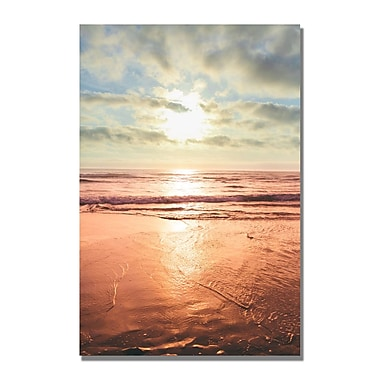 Trademark Fine Art Ariane Moshayedi 'Beach Reflections' Canvas Art 16x24 Inches