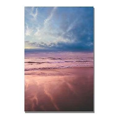 Trademark Fine Art Ariane Moshayedi 'Beach Reflections II' Canvas Art 16x24 Inches