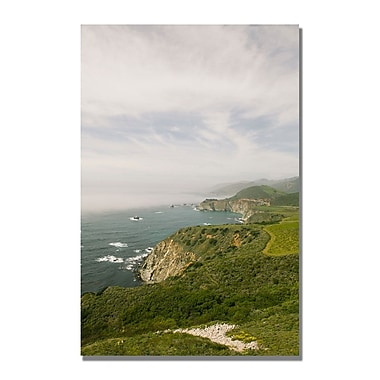 Trademark Fine Art Ariane Moshayedi 'Big Sur Coast V' Canvas Art 35x47 Inches
