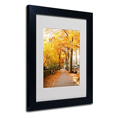 Trademark Fine Art Ariane Moshayedi 'Fall On The Street' Matted Art Black Frame 11x14 Inches