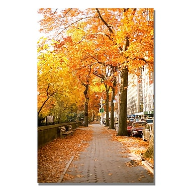Trademark Fine Art Ariane Moshayedi 'Fall On The Street' canvas art 16x24 Inches