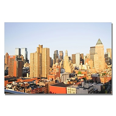 Trademark Fine Art Ariane Moshayedi 'City III' Canvas Art 35x47 Inches