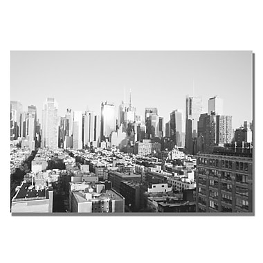 Trademark Fine Art Ariane Moshayedi 'City IV' canvas art 16x24 Inches