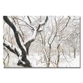 Trademark Fine Art Ariane Moshayedi 'Snowy Trees' Canvas Art 16x24 Inches