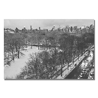 Trademark Fine Art Ariane Moshayedi 'Snowy Park III' canvas art