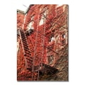 Trademark Fine Art Ariane Moshayedi 'Fire Escape' Canvas Art