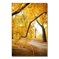 Trademark Fine Art Ariane Moshayedi 'Walk Through the Park' Canvas Art 35x47 Inches