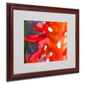 Amy Vangsgard 'Red Sun' Matted Framed Art - 16x20 Inches - Wood Frame