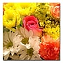 Trademark Fine Art Amy Vangsgard 'Spring Bouquet' Canvas