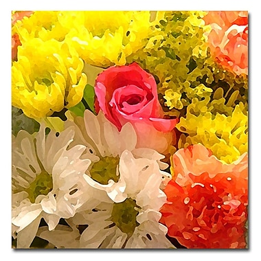 Trademark Fine Art Amy Vangsgard 'Spring Bouquet' Canvas Art