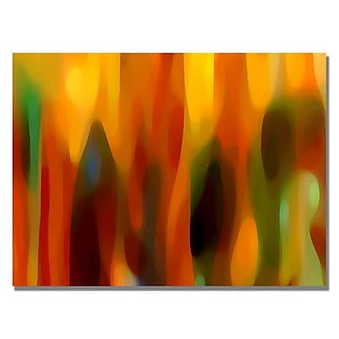 Trademark Fine Art Amy Vangsgard 'Forest Sunlight Horizontal' Canvas Art 18x24 Inches