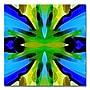 Trademark Fine Art Amy Vangsgard 'Paradise BLue and