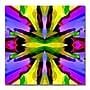 Trademark Fine Art Amy Vangsgard 'Paradise Purple and