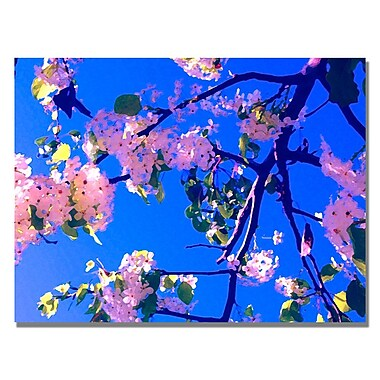 Trademark Fine Art Amy Vangsgard ' Pink Flowering' Canvas Art