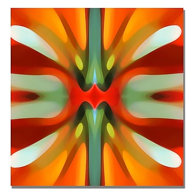 Trademark Fine Art Amy Vangsgard 'Tree Light Symmetry Red' Canvas