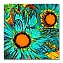 Trademark Fine Art Amy Vangsgard 'Pop Daisies' Canvas