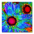 Trademark Fine Art Amy Vangsgard 'Pop Daisies II' Canvas 18x18 Inches