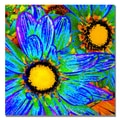 Trademark Fine Art Amy Vangsgard 'Pop Daisies IV' Canvas 18x18 Inches
