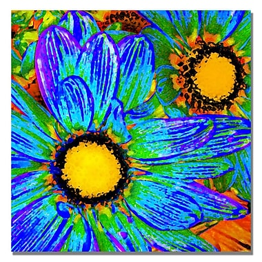 Trademark Fine Art Amy Vangsgard 'Pop Daisies IV' Canvas 35x35 Inches