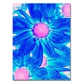 Trademark Fine Art Amy Vangsgard 'Pop Daisies VII' Canvas 24x32 Inches