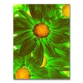 Trademark Fine Art Amy Vangsgard 'Pop Daisies VIII' Canvas 26x32 Inches