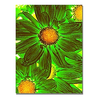 Trademark Fine Art Amy Vangsgard 'Pop Daisies VIII' Canvas 35x47 Inches