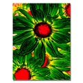 Trademark Fine Art Amy Vangsgard 'Pop Daisies XII' Canvas 35x47 Inches