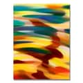 Trademark Fine Art Amy Vangsgard 'Color Fury' Canvas Art 24x32 Inches