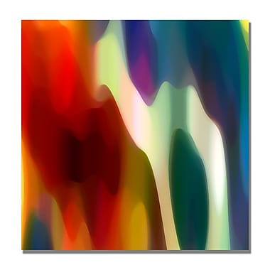 Trademark Fine Art Amy Vangsgard 'Color Fury II' Canvas Art 35x35 Inches