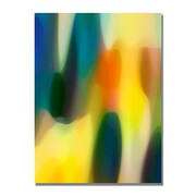 Trademark Fine Art Amy Vangsgard 'Color Fury V' Canvas Art 22x32 Inches