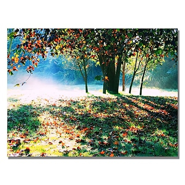 Trademark Fine Art Beata Czyzowska 'Morning Moods' Canvas Art 18x24 Inches