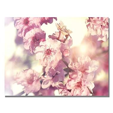 Trademark Fine Art Beata Czyzowska 'Spring Melody' Canvas Art