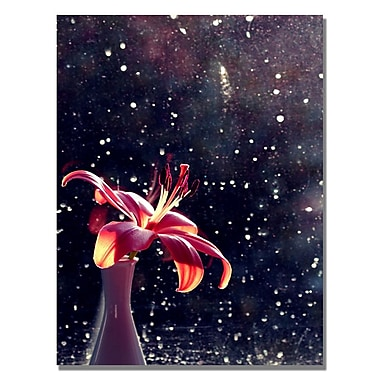 Trademark Fine Art Beata Czyzowska 'Time to Shine' Canvas Art