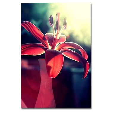 Trademark Fine Art Beata Czyzowska Young 'Lady in Red' Canvas Art