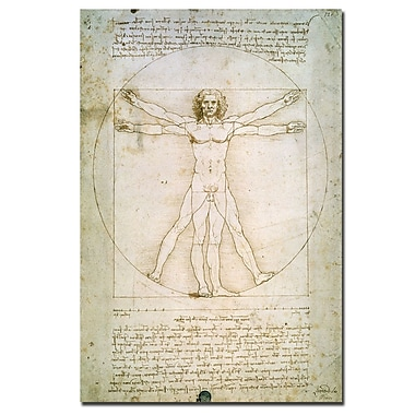 Trademark Fine Art Leonardo da Vinci 'The Proportions of the Human Figure' Art