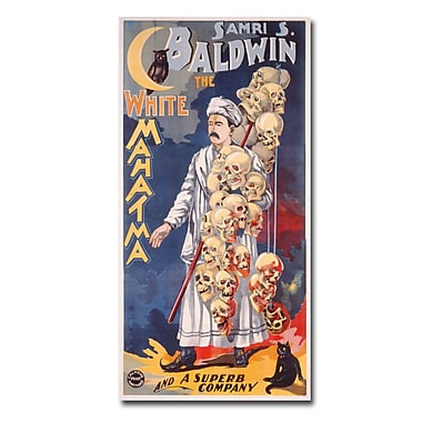 Trademark Fine Art Samri S.Baldwin the Whie Mahatma 1888' Canvas Art 12x24 Inches