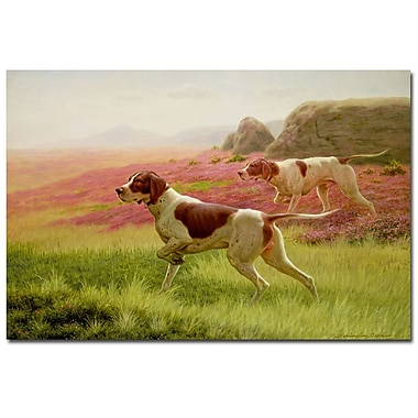 Trademark Fine Art Harrington Bird 'Pointers in the Landscape' Canvas Art